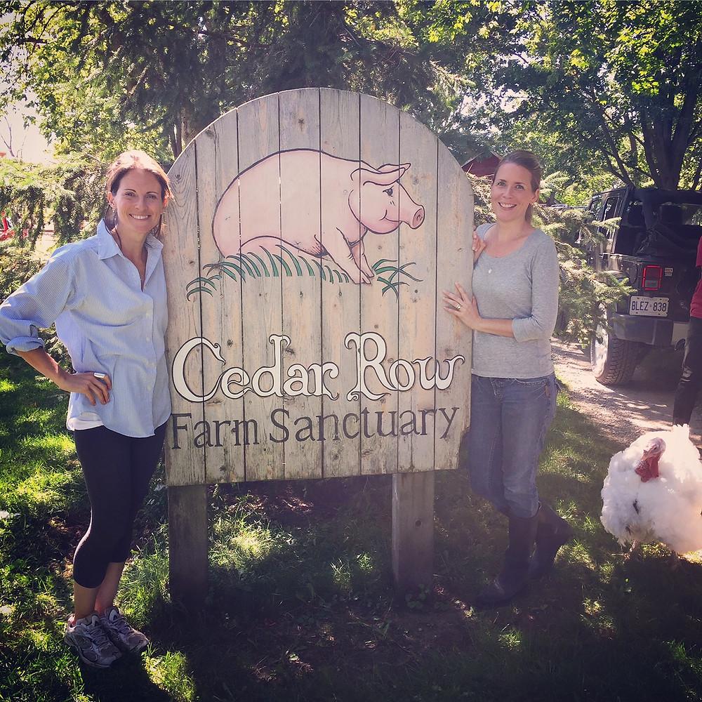 Cedar Row Farm Sanctuary