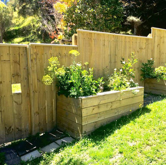 Wooden pailing fence
