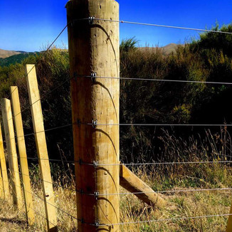 Post, wire and batten