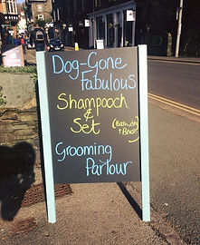 Dog Groomer in the Lake District