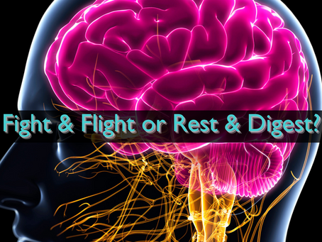 Fight & Flight or Rest & Digest?
