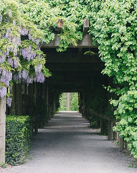 UBC Lawn and Arbour Wedding