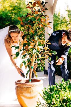 CB wedding 3