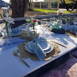 blue boho picnic