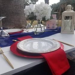 valentine picnic 2