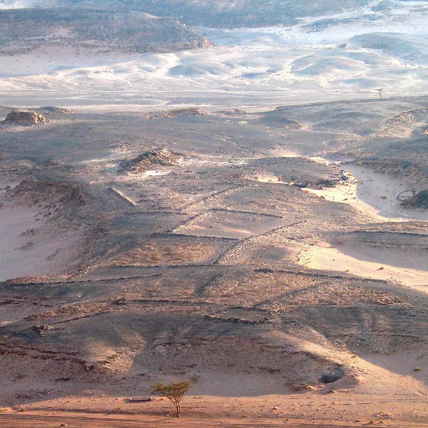 L'exploitation du Sud-Sinai par les Égyptiens entre la période de Nagada et le Moyen Empire