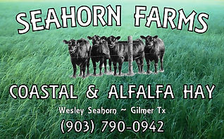 Logo 9 Seahorn Farms.jpg