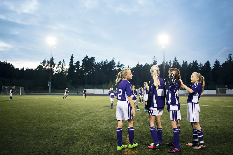 CONCERTS & SPORTING EVENTS Limo Services in Alpharetta
