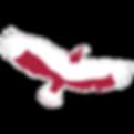 Logo_Vogel_line.png