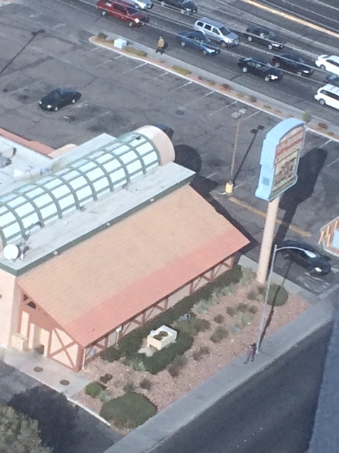curved glass commercial roof by tiley roofing