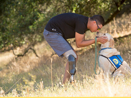 October Proceeds Beneficiary: Canine Companions for Independence