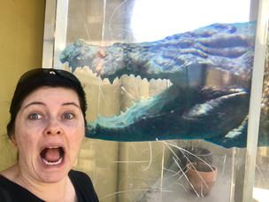 Don't smile at a crocodile!