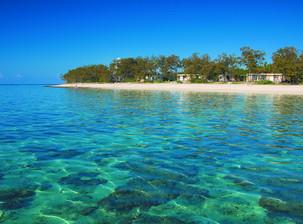 Lady Elliot Island - Best snorkel/dive site in Australia!