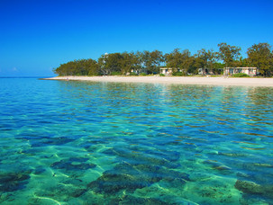 Lady Elliot Island - Best snorkel/dive site in Australia!