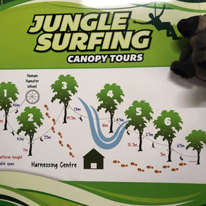 Surfing in the jungle