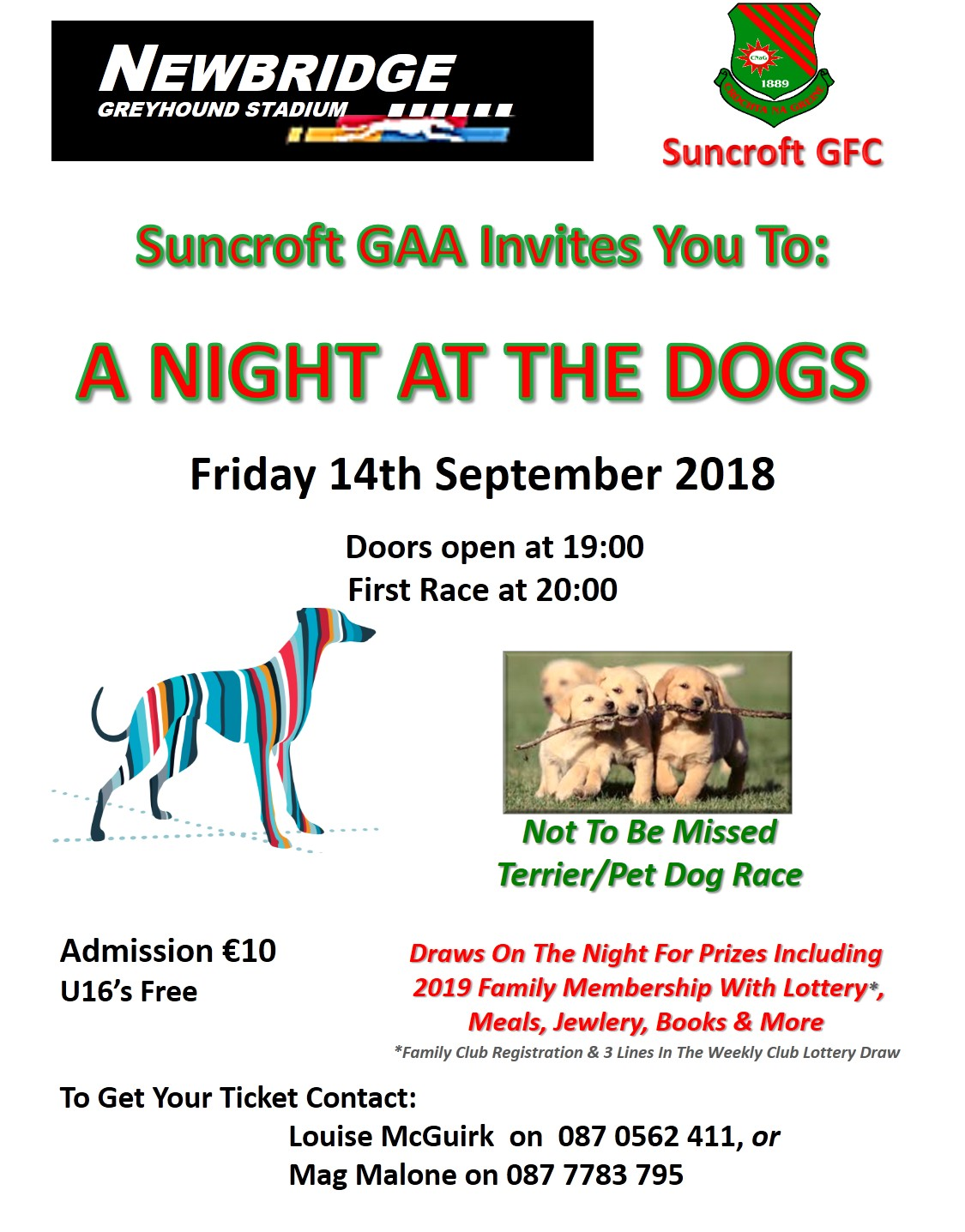 Night At The Dogs 14th Sept | Suncroft Gaelic Football Club