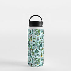 succulent1961283-water-bottles.jpeg