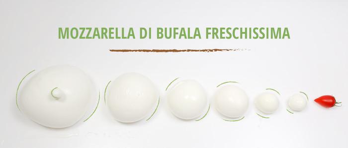slider-mozzarella-bufala.jpeg