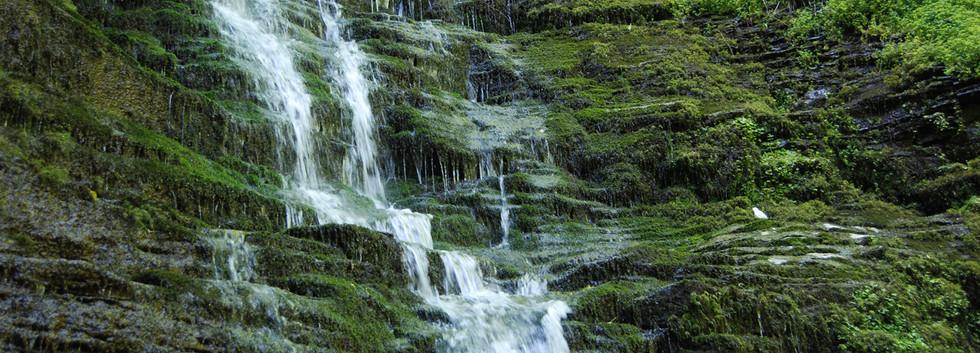 Water Breaks Its Neck