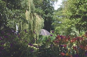 Watergarden04.jpg