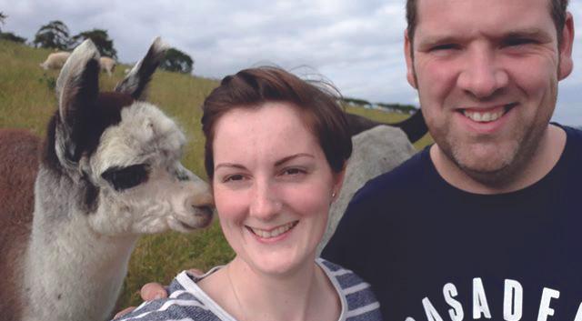 Fostings Alpacas - Kevin & Alice
