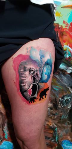 Watercolor Elephant.jpeg