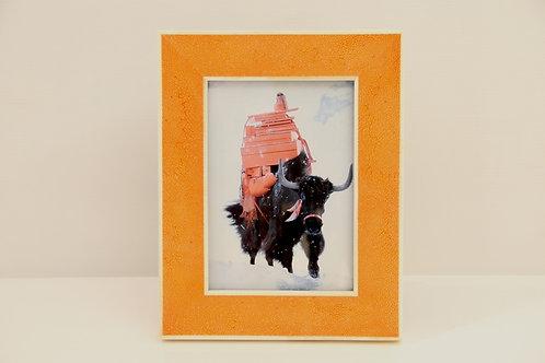 Small Frame 5x7 Orange