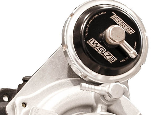 RZR Turbosmart Wastegate with stainless mounting bracket