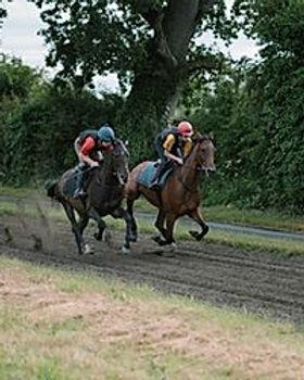 Straight Gallop.jpg