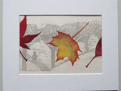 Autumn Leaves - Sycamore