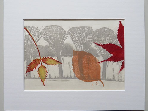 Autumn Leaves - Rose and Beech