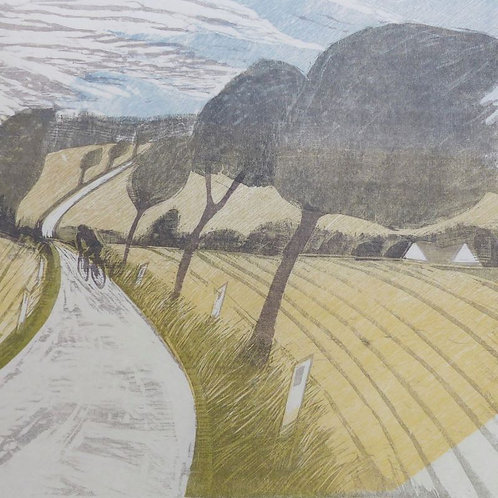 Prevailing Wind - Westerley