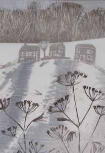 Winter Fennel