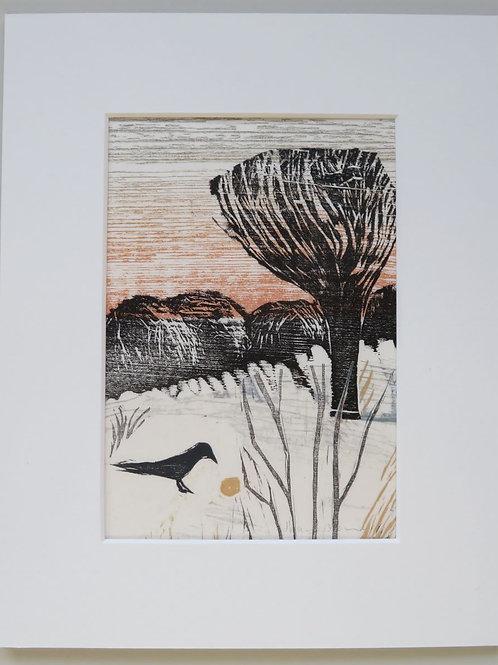 Early Morning Blackbird - collage