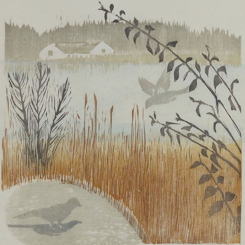 Low-lying Mist, Dawn