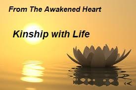 Kinship with Life