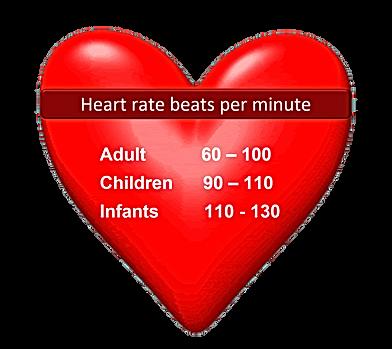 Beats per minute.png