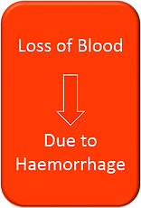 Blood loss.png