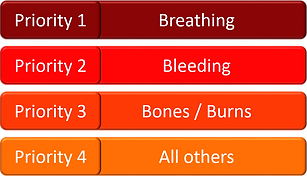 treatment priorities.png