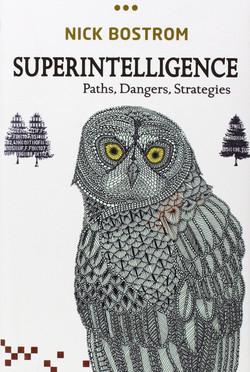 Superintelligence-Paths_Dangers_Strategi