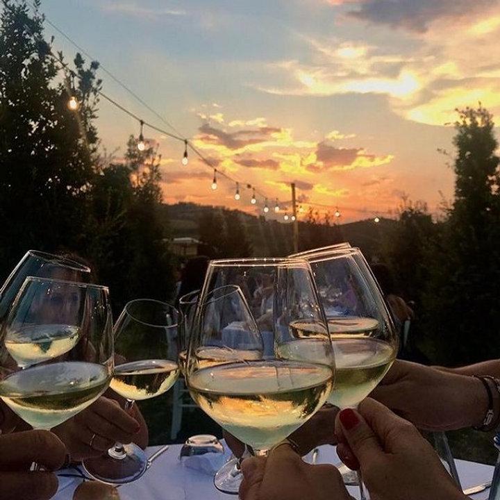 tenuta-santori-piceno-wijnen-21.jpg