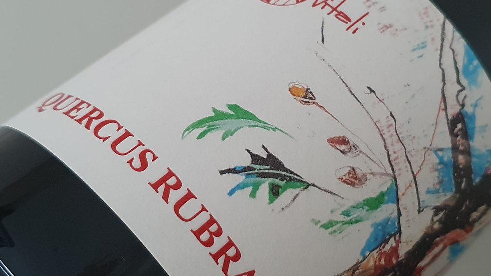Quercus Rubra 2018 - Rosso Piceno DOP
