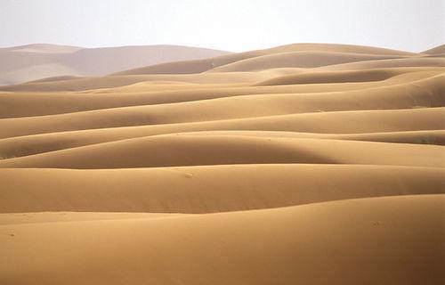 Sand-dunes-Sahara-Morocco.jpg