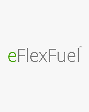 eFlexFuel.jpg