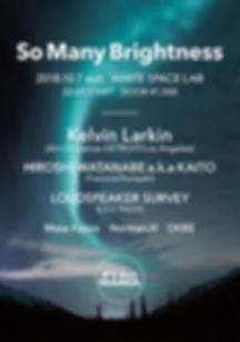LOUDSPEAKER SURVEY,KELVIN LARKIN