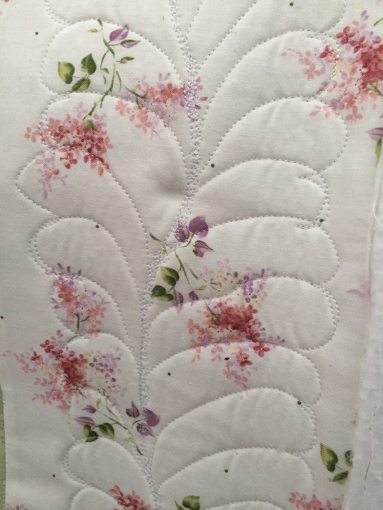 Longarm Border Designs on Cathy's Quilt.jpg