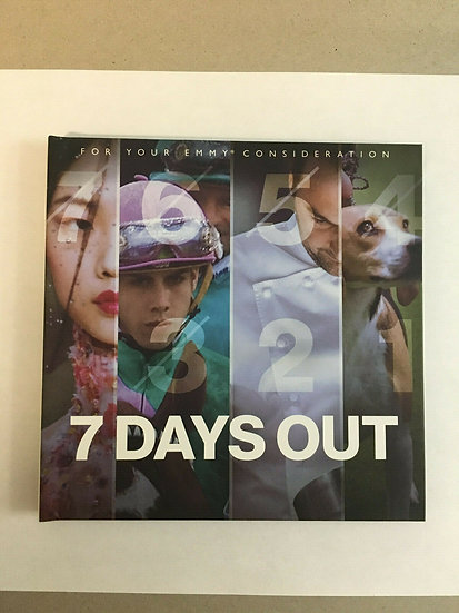 2 FYC 2019 EMMY 7 DAYS OUT MARVEL Daredevil Luck Cage Iron fist Punisher DVD
