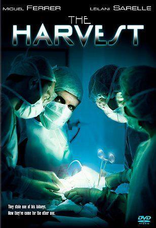 The Harvest (DVD, 2004) Miguel Ferrer/Leilani Sarelle