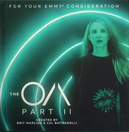 3 FYC 2019 THE AO FYRE 7 DAYS OUT DVD NETFLIX EMMY