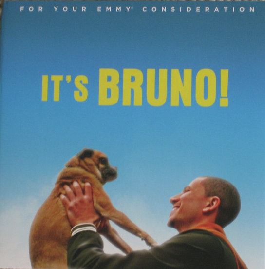 IT'S BRUNO!-complete first season For Your  Consideration-NETFLIX  DVD